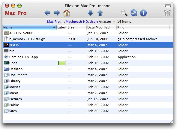 Screen shot: the iGet files window